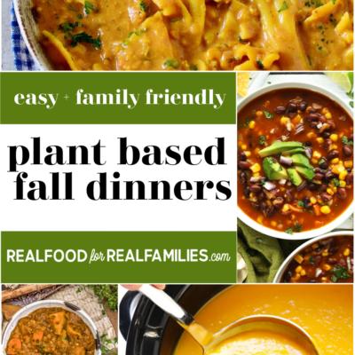 Family friendly plant based dinner ideas – October 2020