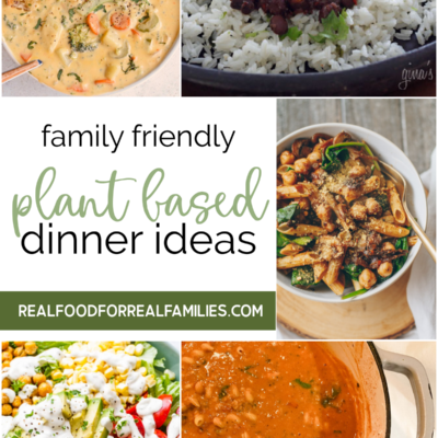 Plant based dinners – 12.3