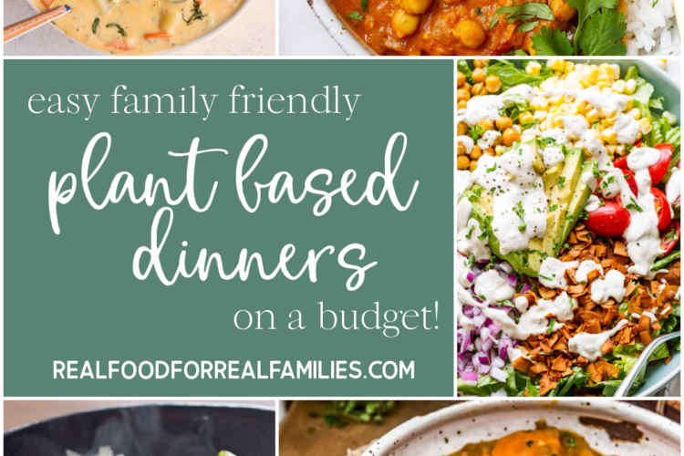 Easy plant based dinners for families January 2021