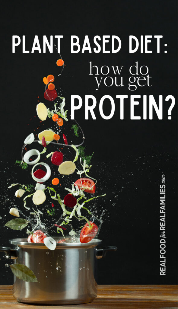 One of the most popular plant based diet questions: what about protein? Here's some ideas for plant based protein foods to keep your body healthy and strong.